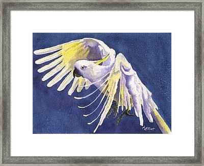 Flight Of Fancy Framed Print by Marsha Elliott