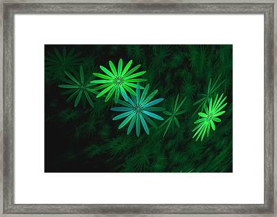 Floating Floral-007 Framed Print by David Lane