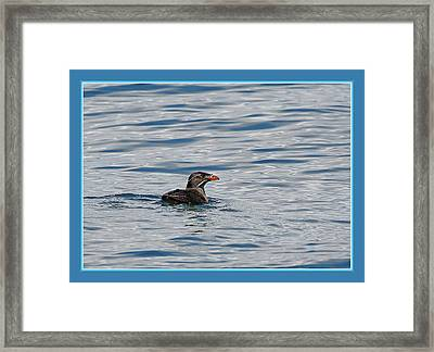 Floating Rhino Framed Print by BYETPhotography