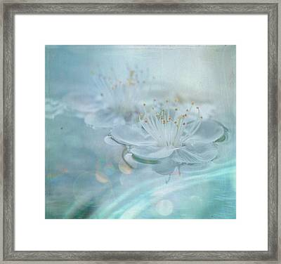 Floating Framed Print by Sue Harley