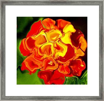 Flora Rebare Bella Framed Print by Robert OP Parrish
