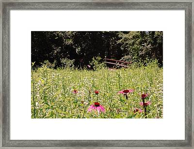 Floral Bridge Framed Print by Jame Hayes