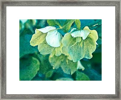 Floral Brocade Framed Print by Colleen Kammerer