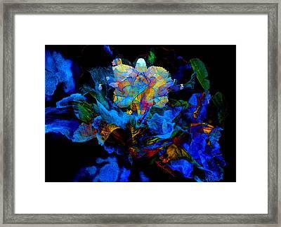Floral Phantom Framed Print by Hanne Lore Koehler