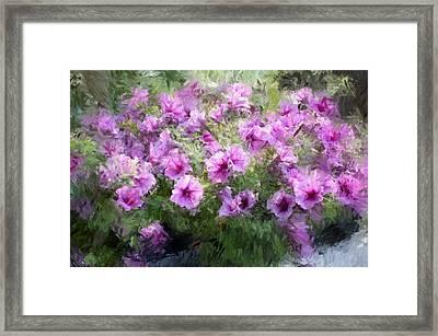 Floral Study 053010 Framed Print by David Lane