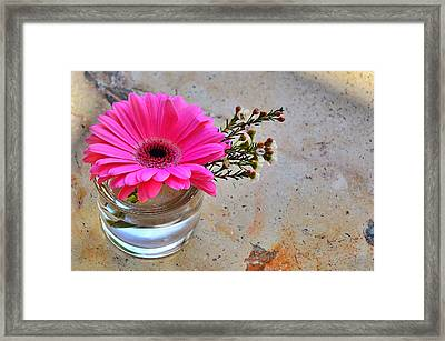 Floret.  Island Of Love. Framed Print by Andy Za
