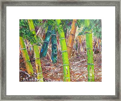 Florida Bamboo By Pallet Knife Framed Print by Lisa Boyd