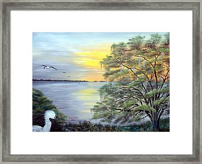 Florida Bay Sunrise Framed Print by Riley Geddings