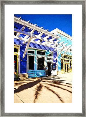 Florida Fantasies # 2 Framed Print by Mel Steinhauer