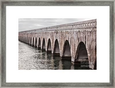 Florida Keys East Coast Railway Framed Print by Elena Elisseeva