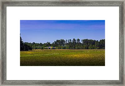 Florida Ranch Framed Print by Marvin Spates