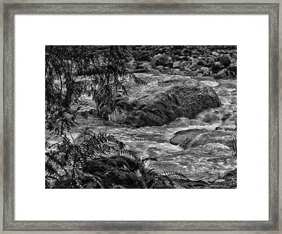 Flow Framed Print by Connie Handscomb