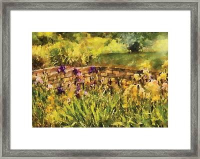 Flower - Iris - By The Bridge Framed Print by Mike Savad