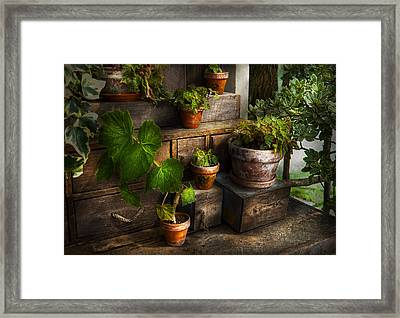 Flower - Plant - A Summers Soak  Framed Print by Mike Savad