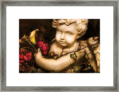 Flower - Rose - The Cherub  Framed Print by Mike Savad
