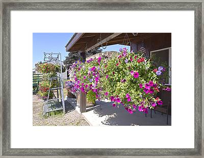 Flower Basket And Racks Displays Outside A Store. Framed Print by Gino Rigucci