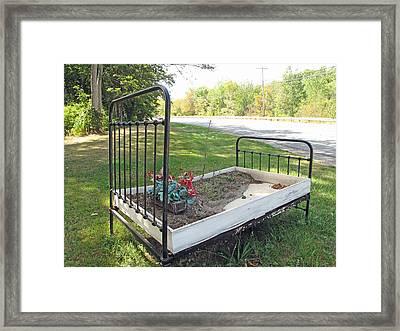 Flower Bed Framed Print by Barbara McDevitt