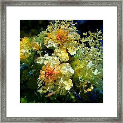 Flower Fantasy Framed Print by Hanne Lore Koehler