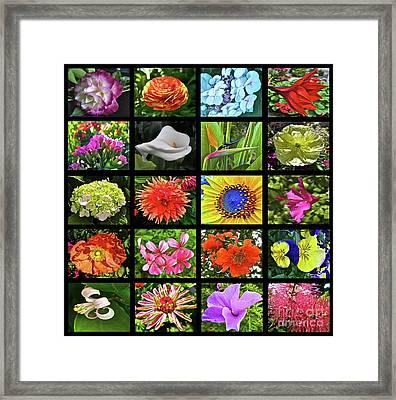 Flower Favorites Framed Print by Gwyn Newcombe