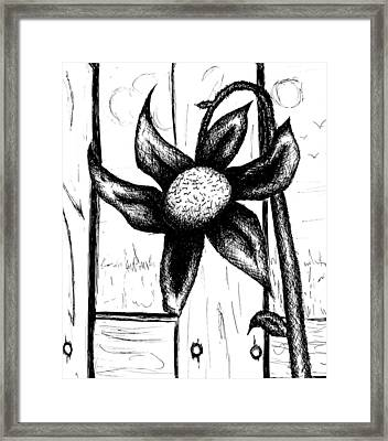 Flower Framed Print by Jera Sky