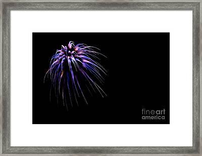 Flower No 8 4979 Framed Print by Ken DePue