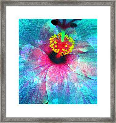 Flower Of Compassion Framed Print by Fania Simon