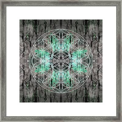 Flower  Of Life Teal Grey Framed Print by Filippo B