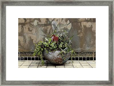 Flower Pot Framed Print by Viktor Savchenko