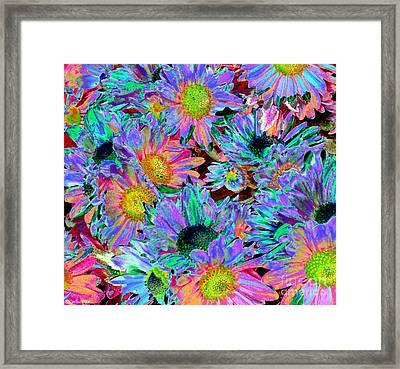 Flower Power Framed Print by Sabrina K Wheeler