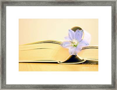 Flower With Book Framed Print by SK Pfphotography