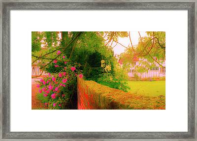 Flowered Wall Framed Print by Jan W Faul