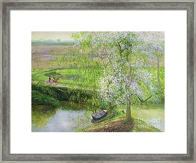 Flowering Apple Tree And Willow Framed Print by Timothy Easton