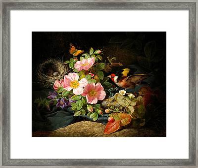 Flowers , Still Life Framed Print by Celestial Images