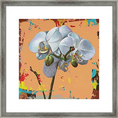 Flowers #12 Framed Print by David Palmer
