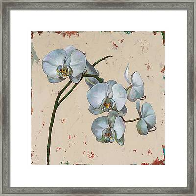 Flowers #13 Framed Print by David Palmer