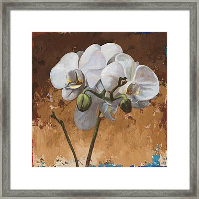 Flowers #7 Framed Print by David Palmer