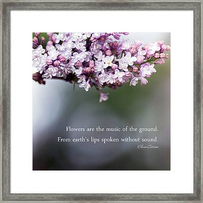 Flowers Are Music Framed Print by Rebecca Cozart