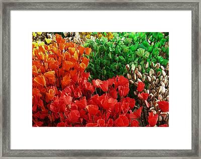 Flowers Framed Print by Mohammed Nasir