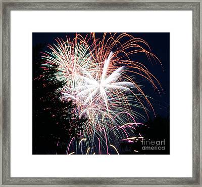 Flowers Of Light Framed Print by Robert E Alter Reflections of Infinity