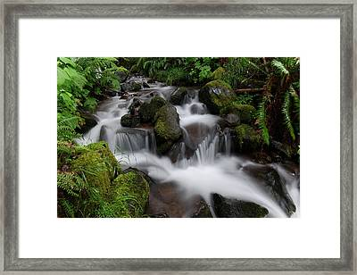 Flowing Beauty In The Green Framed Print by Jeff Swan