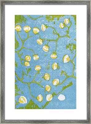 Fluffy Seedheads Framed Print by Bella Larsson