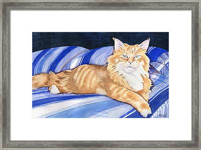 Fluffy The Lioness Framed Print by Marsha Elliott