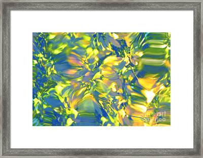 Fluttering Of Color Framed Print by Sybil Staples