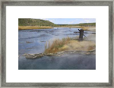 Fly Fishing And Geyser  Framed Print by Gayle Johnson