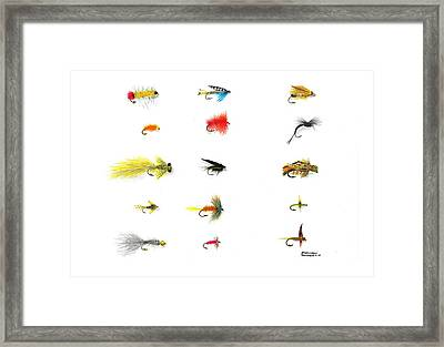 Fly Fishing Nymphs Wet And Dry Flies Framed Print by Sharon Blanchard