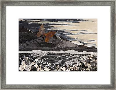 Fly Through A Troubled Sky Framed Print by Stanza Widen