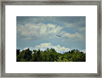 Flying Framed Print by Darlene Bell