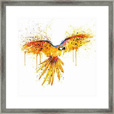 Flying Parrot Watercolor Framed Print by Marian Voicu