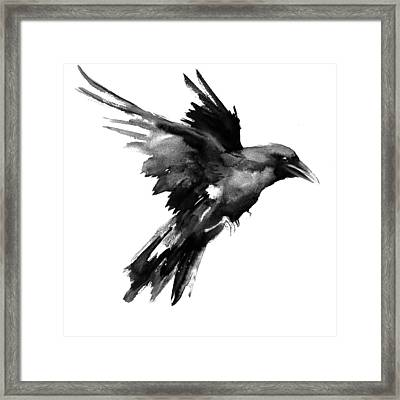 Flying Raven Framed Print by Suren Nersisyan