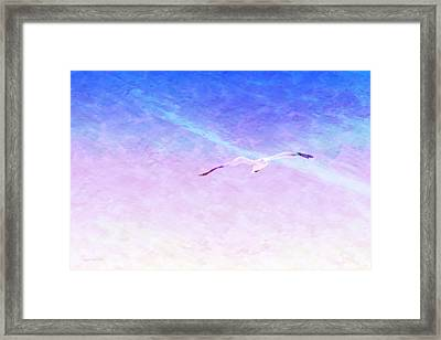Flying Solo Framed Print by Wally Boggus